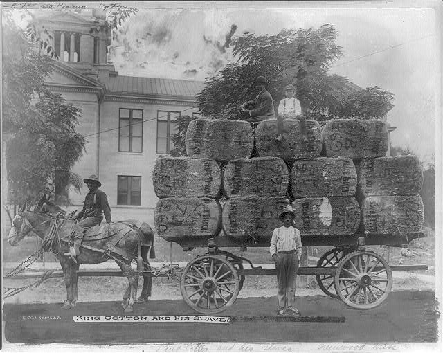 King Cotton and his slaves, Greenwood, Miss.