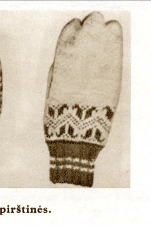 Isn't this mitten/glove interesting?