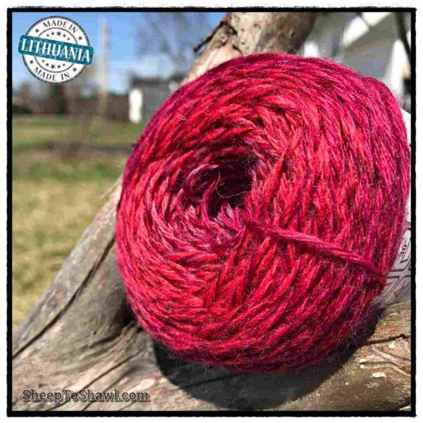 Rainbow Astral Yarn - Berry - R19 3