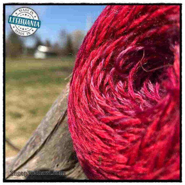 Rainbow Astral Yarn - Berry - R19 2
