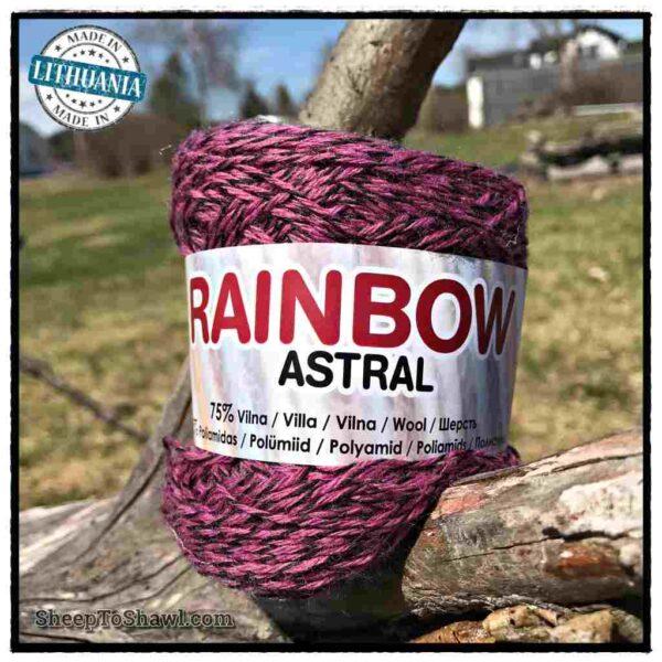 Rainbow Astral Yarn - Raspberry Black Stripe - R16 1