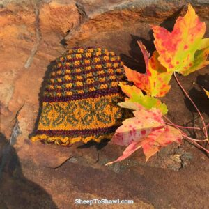 Autumn in the Andes Hat KAL